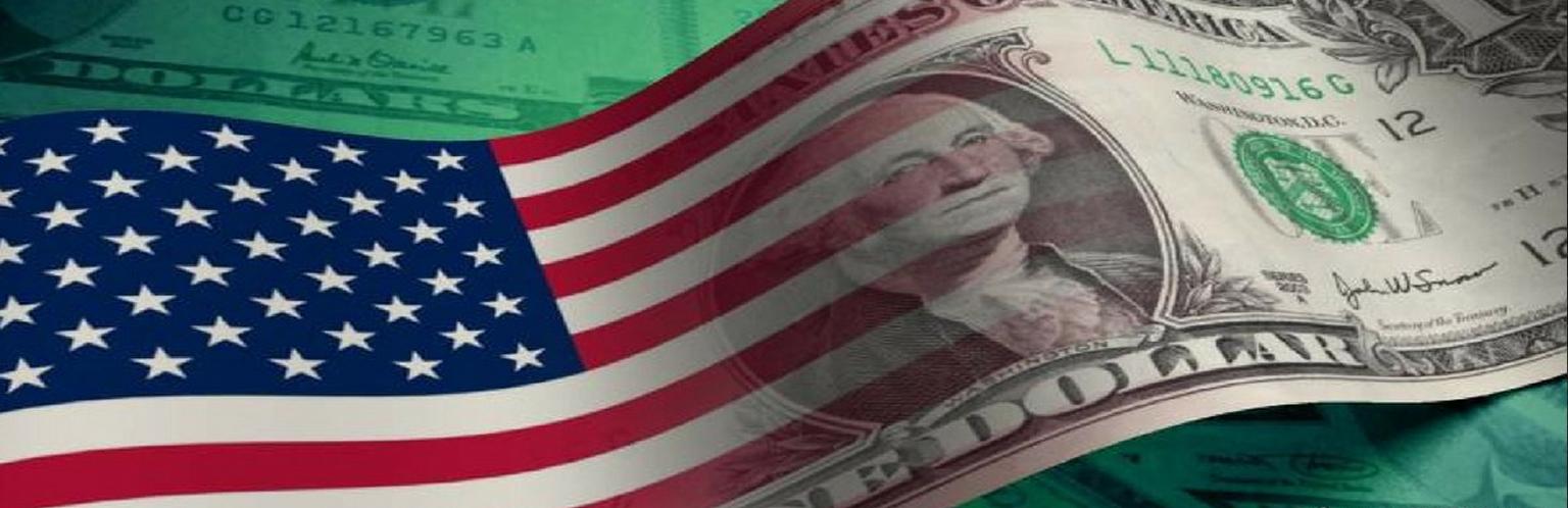 USA Dollar and Flag