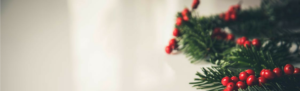 Sprig of holly and mistletoe with gray background and